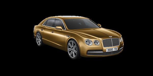 Bentley Models - Leusden
